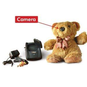 teddy-camera